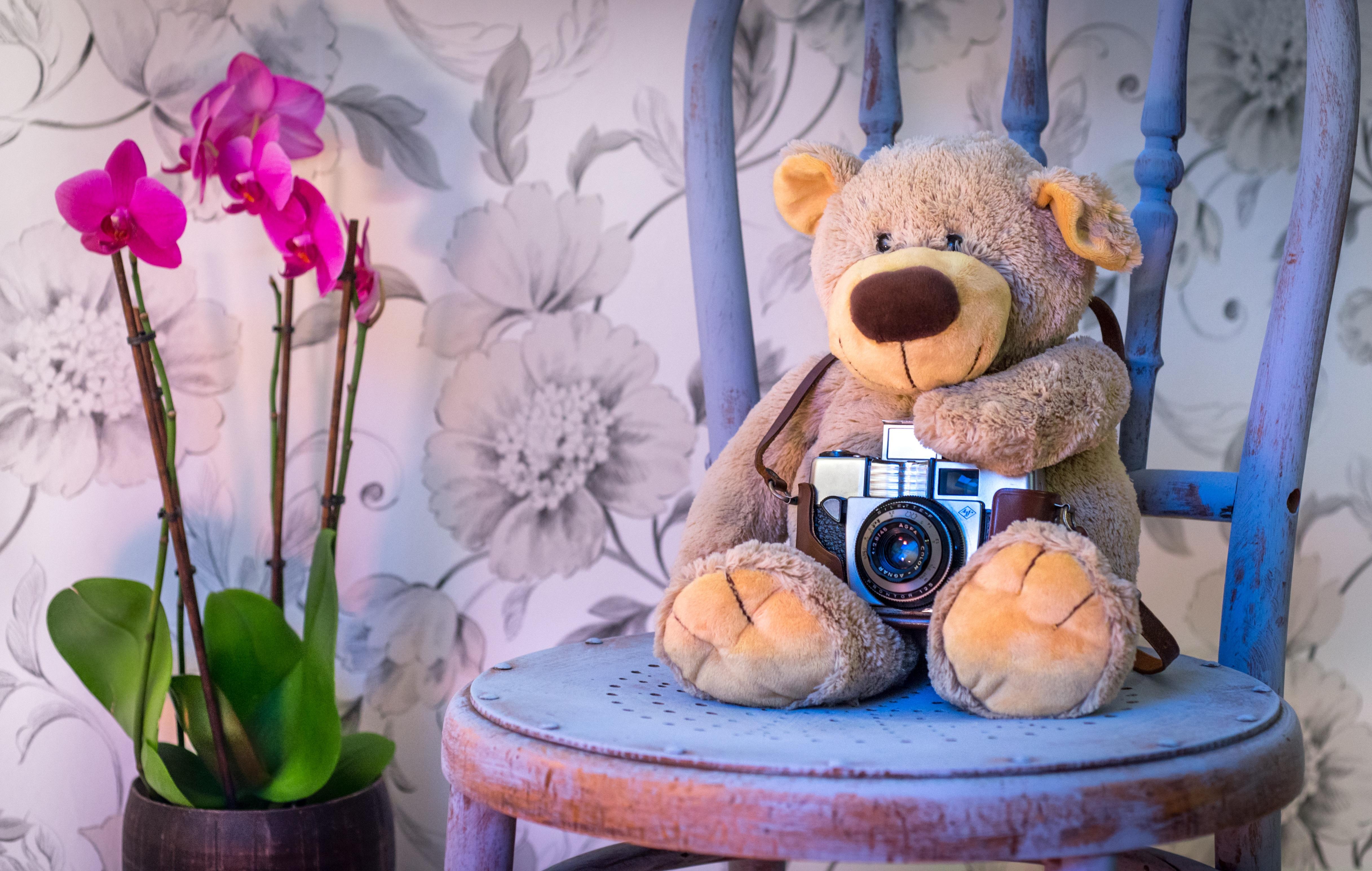 Kinderkamera-test-teddybärmitkamera